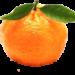 giovannicagnoni Logo